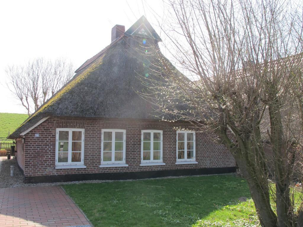 nachhaltig, holzfenster, oldenburg